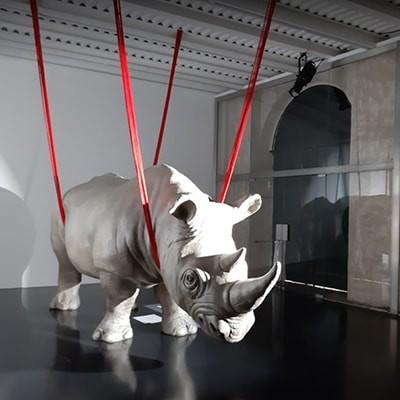 Rhinoceros Gallery, between the Velabro, the Palatino and Bocca della Verità in Rome