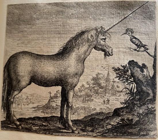 Aegidius Sadeler's unicorn