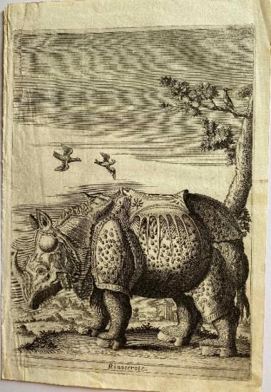 Giuseppi d'Allessandro 1723
