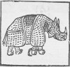 Penni 1515
