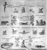 Chios 1810