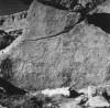 A rhinoceros engraved on the rock at Maia Dib (Acacus, Fezzan, Libya)