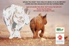 No to rhino horn