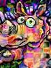 Schroder: 1000 Facets