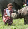 Nursing a young Indian rhino