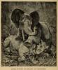 Elephant and rhinoceros 1889